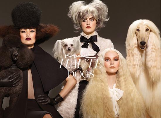 На подиуме... собаки! Неожиданная коллекция от M.A.C