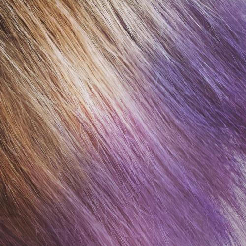 волосы Лизы