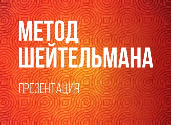 Презентация новой книги Михаила Шейтельмана  «Не такой как Тиньков»