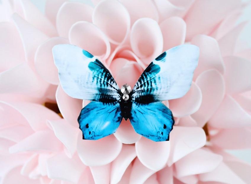 Бабочки в моей голове… или энтомологический тренд
